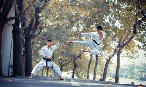 featured image thumbnail for post Tang Soo Do